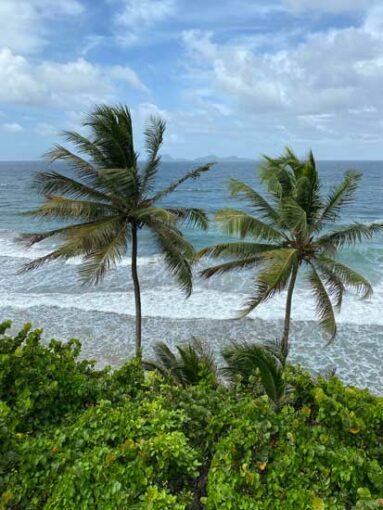 grenada_beach